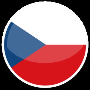 Доставка наливных и опасных грузов из Чехии