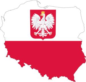 Доставка опасного груза из Польши